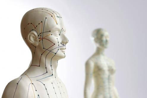 Acupuncture Meridian Lines