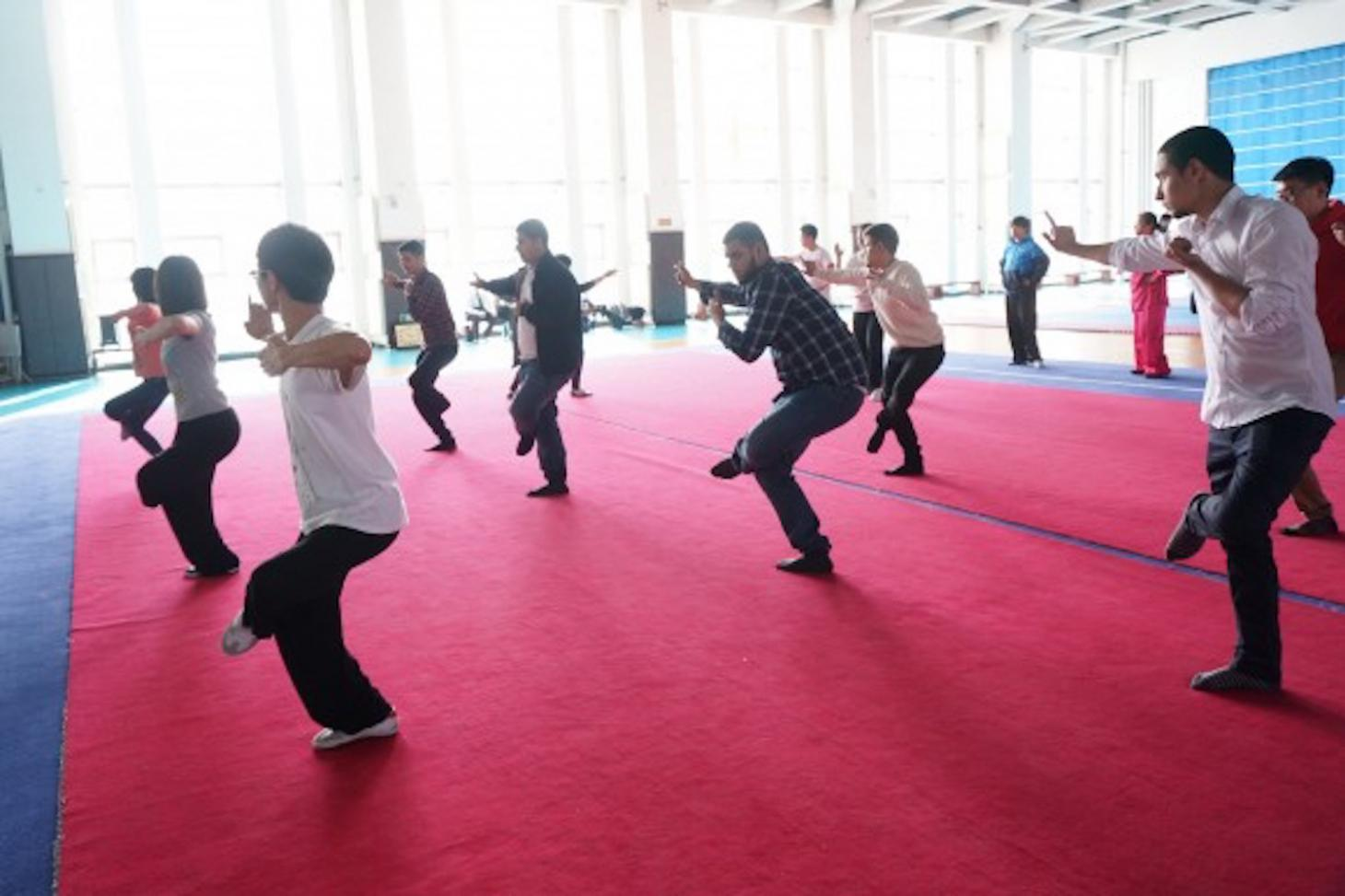 Students learning Chinese kung fu